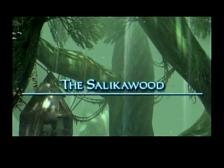 Final Fantasy XII Salikawood Moogles