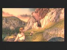Zelda Twilight Princess Hawk